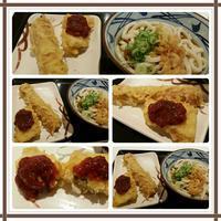 丸亀製麺でお昼ごはん♪ - コグマの気持ち