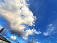 入道雲の夕空東西南北2020/8/27 in Tokyo - むっちゃんの花鳥風月  ( 鳥・猫・花・空・山 )