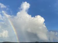 虹 - ドコカ遠くと日々のアシモト