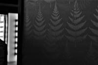 wallpaper - フォトな日々