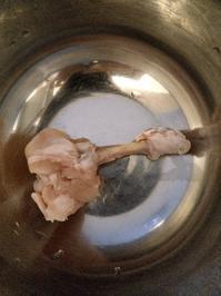 本「鳥肉以上、鳥学未満。」の続き - 【作文・小論文教室】今はじまる未来へ