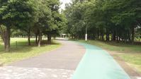 続くジョギングコース - 散策で発見、自分の街のいいところ