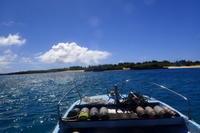 20.8.29嵐の前の・・ - 沖縄本島 島んちゅガイドの『ダイビング日誌』