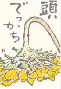 ひまわり「頭でっかち」 - ムッチャンの絵手紙日記