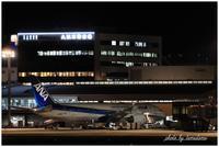 飛行機夜景~フィナーレ - 今日のいちまい