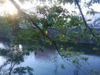 大岡川、晩夏の夕暮れ - 神奈川徒歩々旅