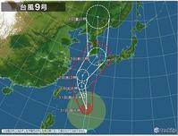 嵐の季節 - JA大潟村 組合長ブログ