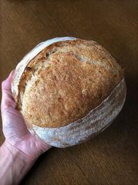 カンパーニュ(コールドプルーフ) - slow life,bread life