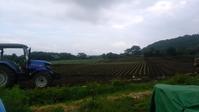 長雨のあとは干ばつ…!野菜不足! - 農業青年のブログ