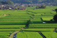 橿原市明日香望む - ぶらり記録 2:奈良・大阪・・・