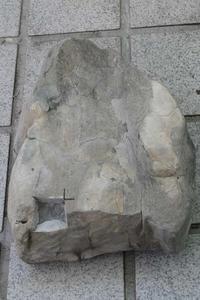 after 20年北のプー生活(18)…化石編(4) - ふぉっしるもしてみむとてするなり
