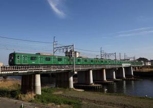 東横線のアオガエル【2021年2月20日写真追加】 - ICOCA飼いました