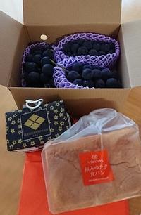 イケセイ菓子博巨峰食パン - jujuの日々