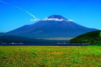 令和2年8月の富士(10)山中湖畔夏の花と富士 - 富士への散歩道 ~撮影記~
