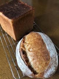 再び、カンパーニュ(コールドプルーフ) - slow life,bread life