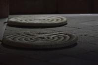 長月の始まり@春日大社 - 東大寺が大好き