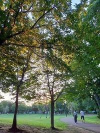 9月が始まりました。 - 和みの風の~おはなし道しるべ~