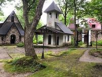 今日のアートガーデン - 和田野の森のまん中で
