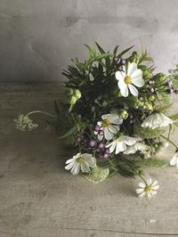9月の営業予定 - blossom