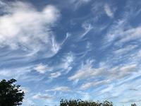 雲がおどる♪ - 笑う門には福来たる
