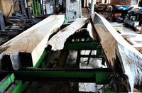 欅製材賃挽き - SOLiD「無垢材セレクトカタログ」/ 材木店・製材所 新発田屋(シバタヤ)