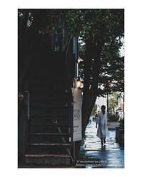 雨があがったら - ♉ mototaurus photography