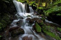 瓜割の滝(福井県小浜市) - 花景色-K.W.C. PhotoBlog
