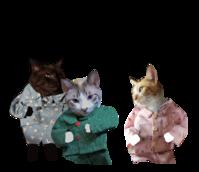 秋の夜長はパジャマでパーティー - ぎんネコ☆はうす