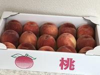 家庭用の桃、届きました。 - 秋田 蕗だより