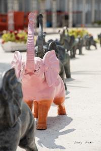 ピンクの像♪ - Lovely Poodle