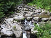 『夫婦滝の散策~』 - 自然風の自然風だより