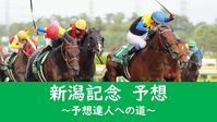 新潟記念2020予想 - 競馬好きサラリーマンの週末まで待てない!