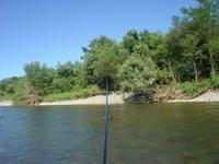 赤川アユ釣り事情気温38.5℃?水温26℃強ほとんどお湯 - 「 ボ ♪ ボ ♪ 僕らは釣れない中年団 ♪ 」Ver.1