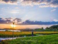 備中国分寺赤米が少し - 道草Photo Life2