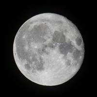 天体観測十六夜月 - 月見野営