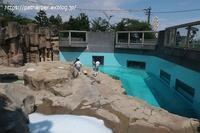 2020年8月王子動物園その3みゆきさんオヤツタイム - ハープの徒然草