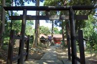せみ時雨の東金・貴船神社 - 東金、折々の風景