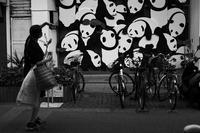 残暑の古町20200905 - Yoshi-A の写真の楽しみ