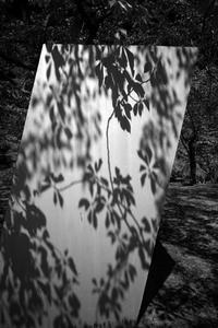 空中庭園は久しぶり20200905 - Yoshi-A の写真の楽しみ