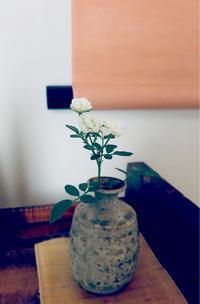 台風の備え - 自然を見つめて自分と向き合う心の花