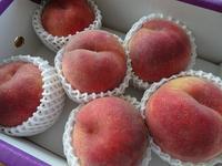 さくら白桃 - ほのぼのはうす