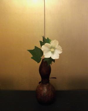 颶風 - 一茎草花