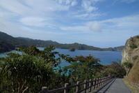 楽園へ  6   ~村営バスと徒歩で島歩き~ - 美鈴とトラと私とお庭