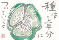 ピーマンの種は上半分についているのね - ムッチャンの絵手紙日記