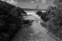 想い出はモノクローム - 沖縄 Part.43 - - 夢幻泡影
