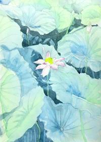 蓮の花 - ryuuの手習い