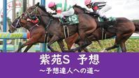 紫苑S 2020予想 - 競馬好きサラリーマンの週末まで待てない!