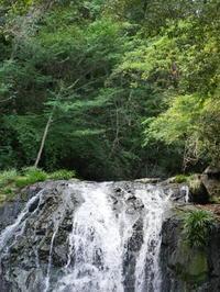 鳴滝森林公園 - 三日おばさん