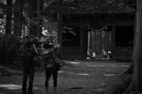 参道の風景 - フォトな日々