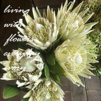 ◉12時からSTARTです, -  Flower and cafe 花空間 ivory (アイボリー)